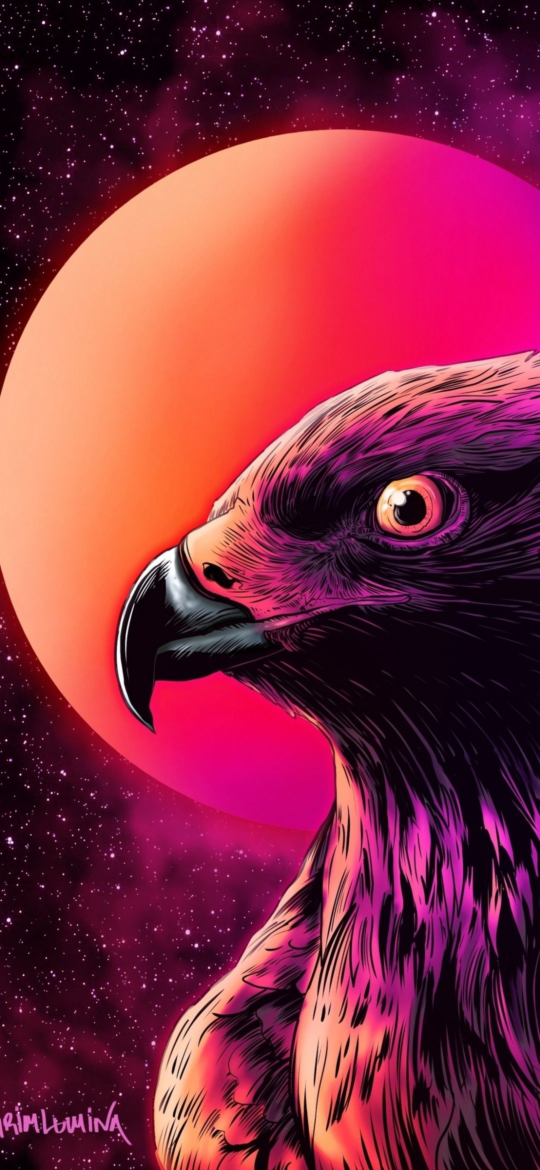 Eagle in sky ultra hd wallpaper for iphone