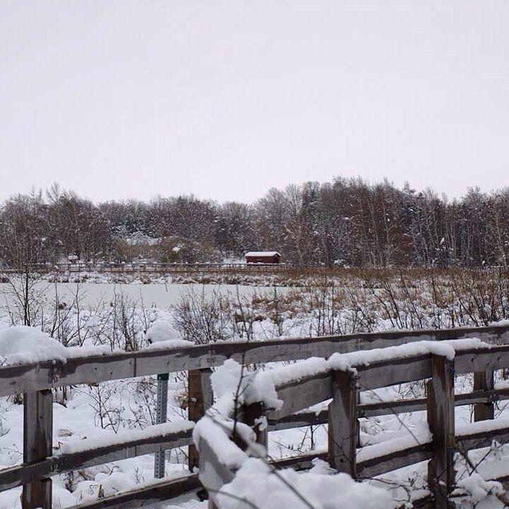 "Jack Hawkins's Instagram post: ""Fresh snow over Waterfowl. #winterphotography #winter #snow #justgoshoot #sharecangeo #sackville #explorecanada #explorenb #footbridge…"""