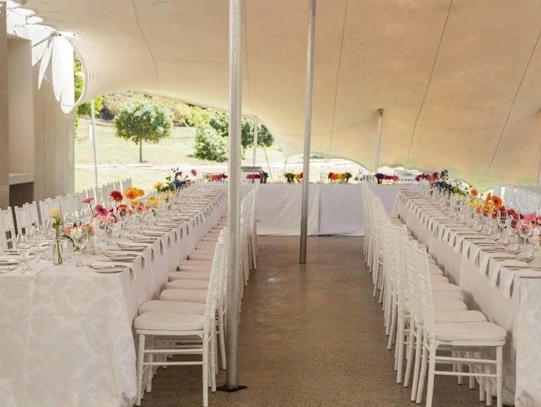 White tiffany chairs gold tiffany chairs brackenfell gumtree weddings junglespirit Image collections