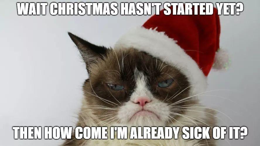 Pin By Ms C On Holiday Memes Grumpy Cat Humor Funny Cat Memes Grumpy Cat Christmas
