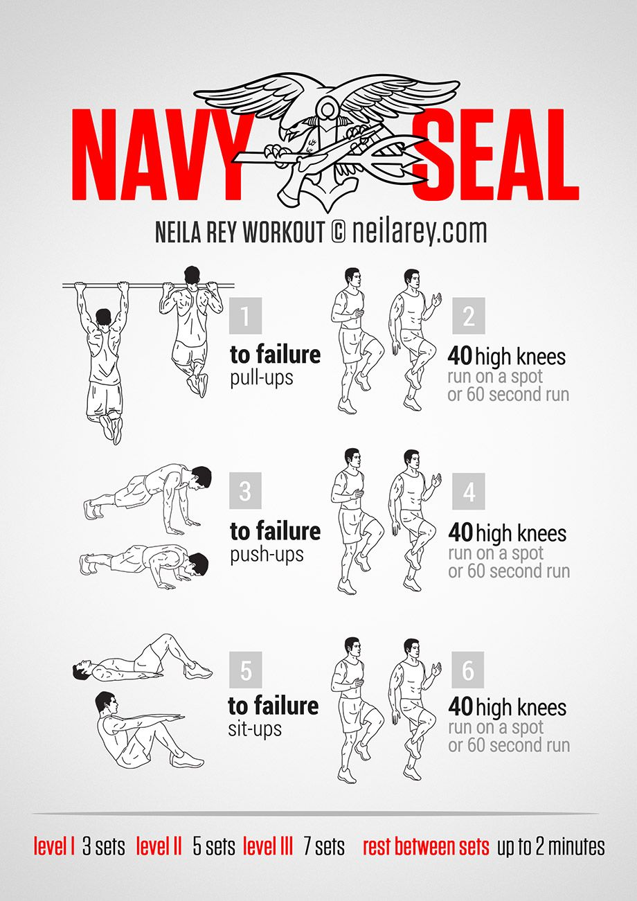 Navy Seal Workout Routine Chart : workout, routine, chart, Workout, Military, Workout,, Bodyweight