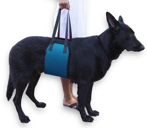 Rehab Dog Lift Harness For Injured Dogs Dog Training Pads Dog