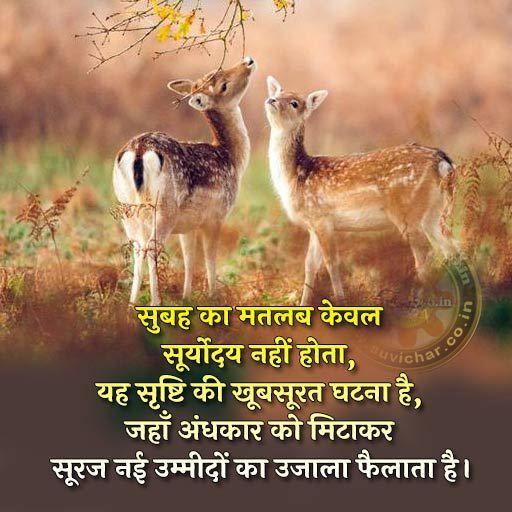 Good Morning , सुप्रभात Hindi SMS   Zindgi Kitni