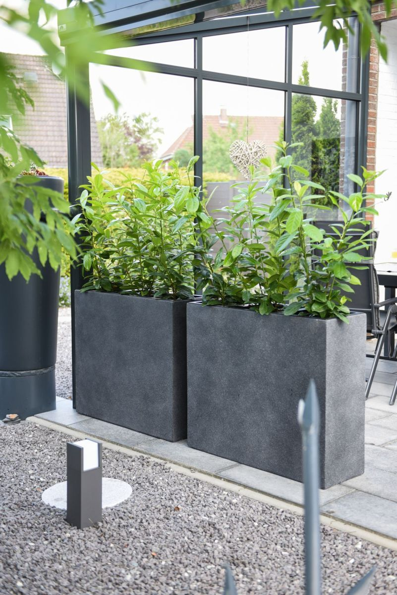 4er Set Pflanzkubel Raumteiler Beton Elemento Anthrazit In 2020