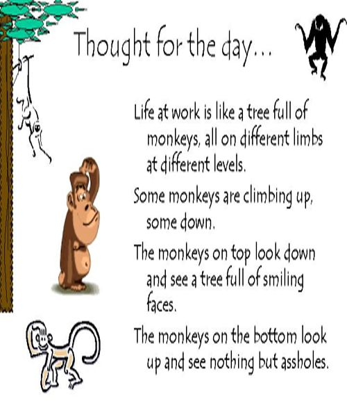 Thought For The Day Work Quotes Funny Workplace Quotes Work Quotes Inspirational