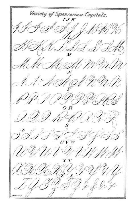 Pin Von Seni Hoffi Auf Kalligrafie Schriftart Alphabet Kaligraphie Kalligraphie