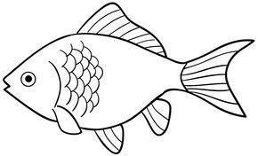 Mewarnai Gambar Ikan Mas