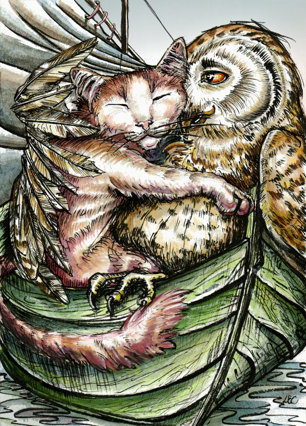 The Owl And The Pussycat  What A Couple  On Line Art -8844