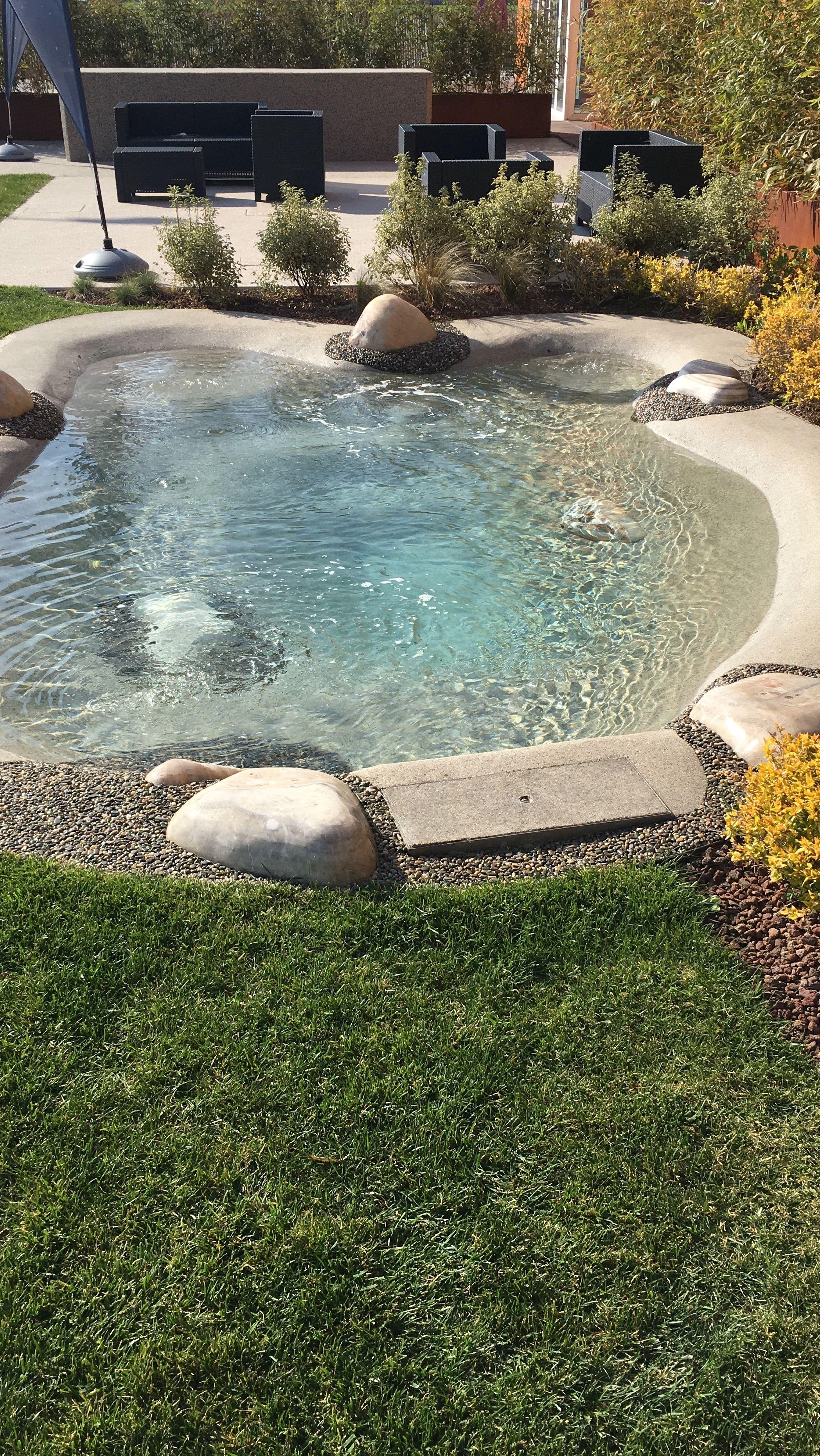 Pin By Jack Verhagen On Piscinas Backyard Pool Designs Small Backyard Pools Backyard Beach