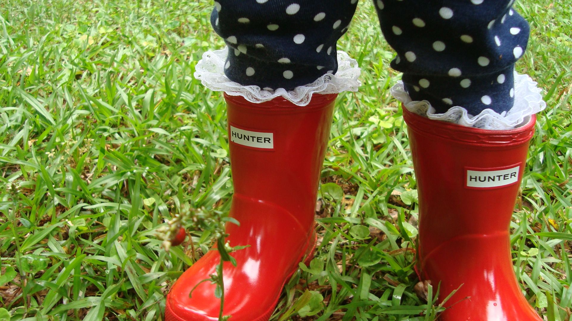 Paired With Tall Ruffle Socks And Leggings Author Holly L Lee Legging Cotton Rich 4pc