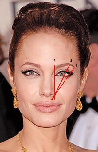 oh angelina jolie yes she has beautiful brows too i