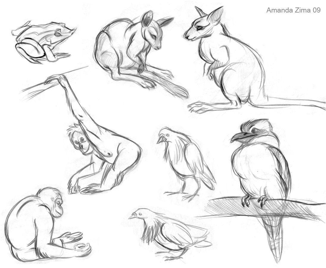 Amanda\'s Drawing Blog | Character Design | Pinterest | Animal ...
