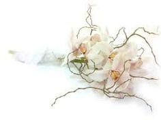 bouquet de novia orquideas - Buscar con Google