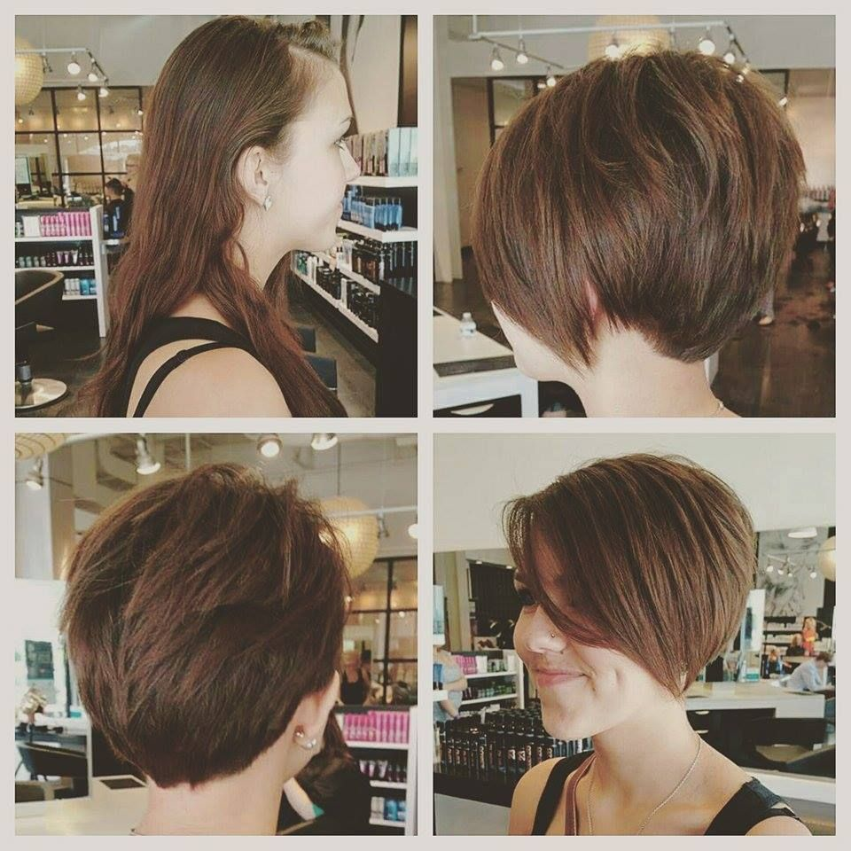 This Guest Donated Her Hair And Got This Gorgeous New Look In Return From Mindi Hair Haircut Hairstyle Haircolor Shorthair Gorgeous Hair Hair Styles Hair