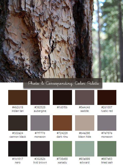 Woodland color scheme forrest room color combinations - Living room color palette generator ...