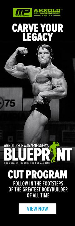 Arnold schwarzeneggers blueprint to cut weight lifting arnold schwarzeneggers blueprint to cut malvernweather Choice Image