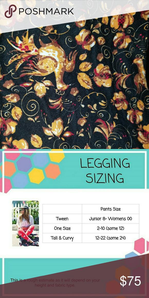 461eb6e3746e17 Thanksgiving Turkey Leggings TC LuLaRoe Butter soft turkey leggings! LuLaRoe  Pants Leggings