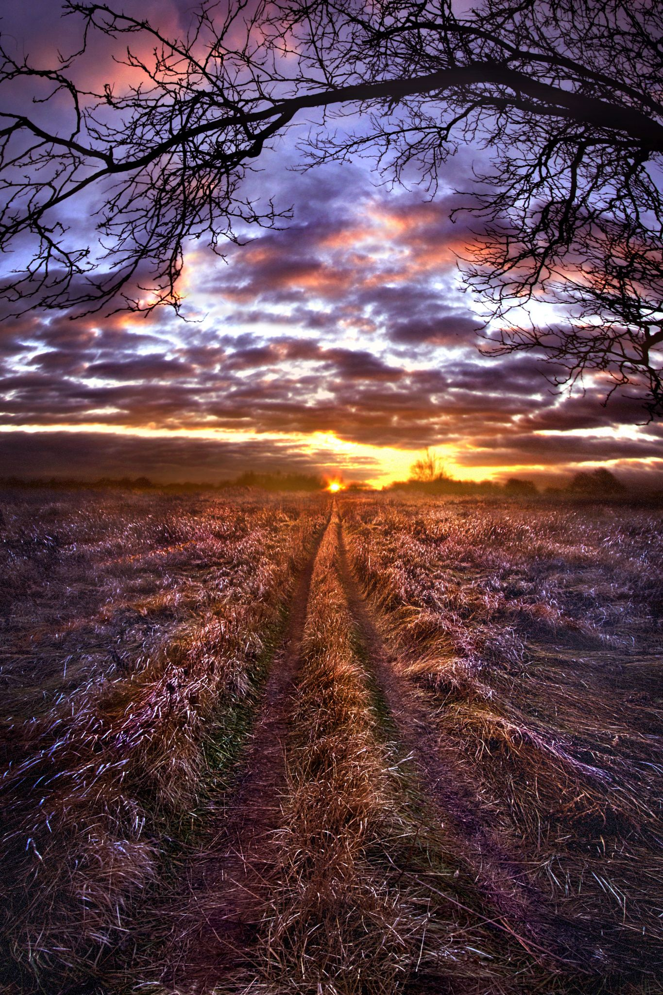 ~~To The Place I Belong   sunrise in Wisconsin   by Phil Koch~~