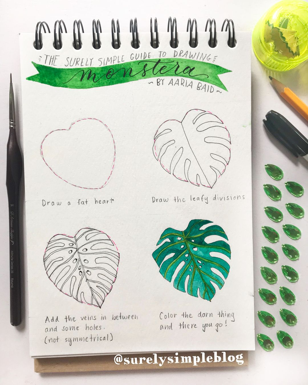How To Draw Monstera Delicious Plant Step By Step On How To