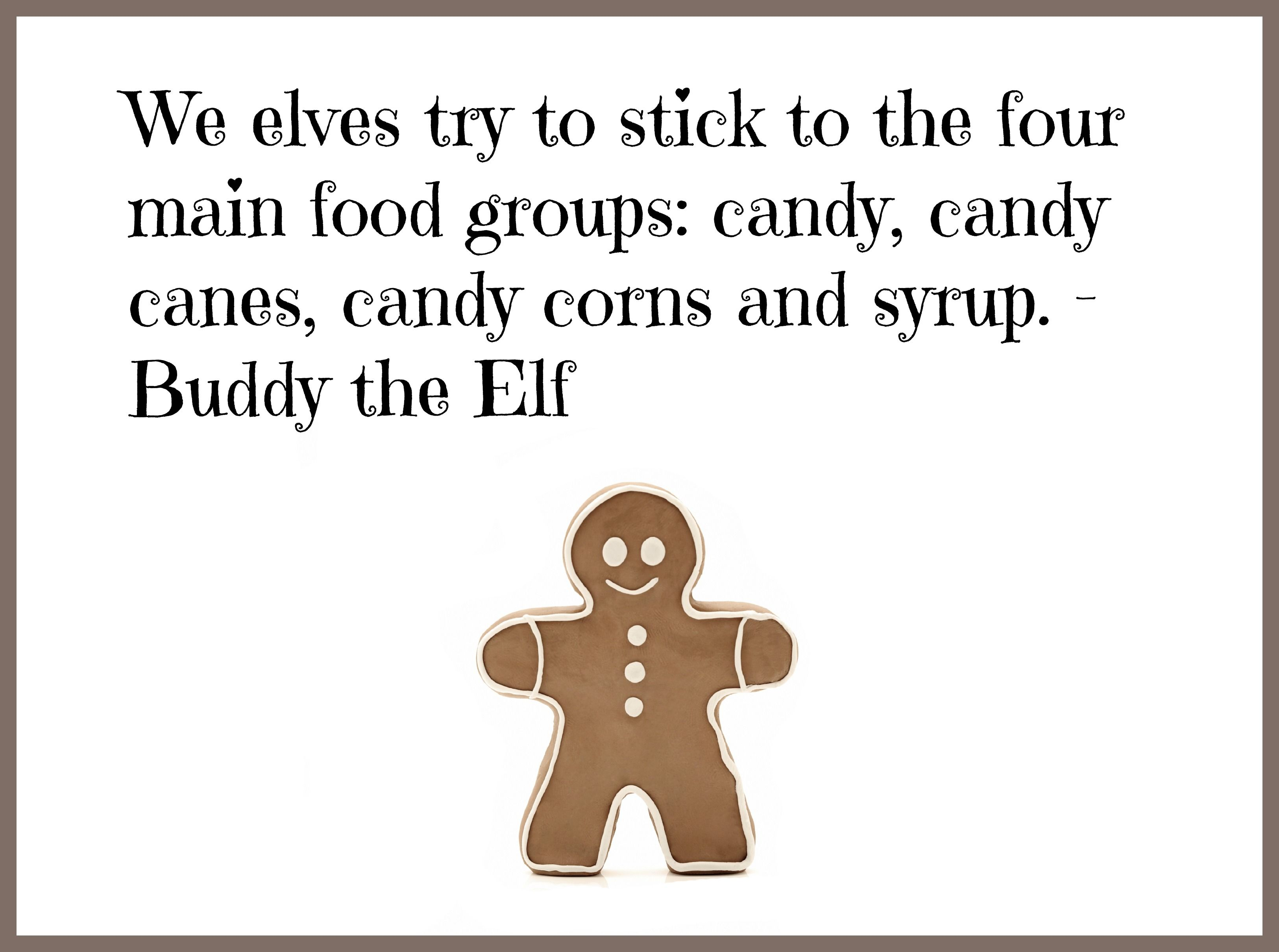 We elves try to stick to the four main food groups: candy, candy canes, candy corns and syrup. -Buddy the Elf