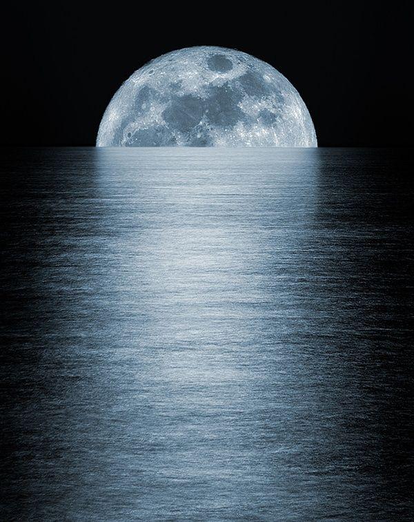 сорта фотография тающей луны торговые точки