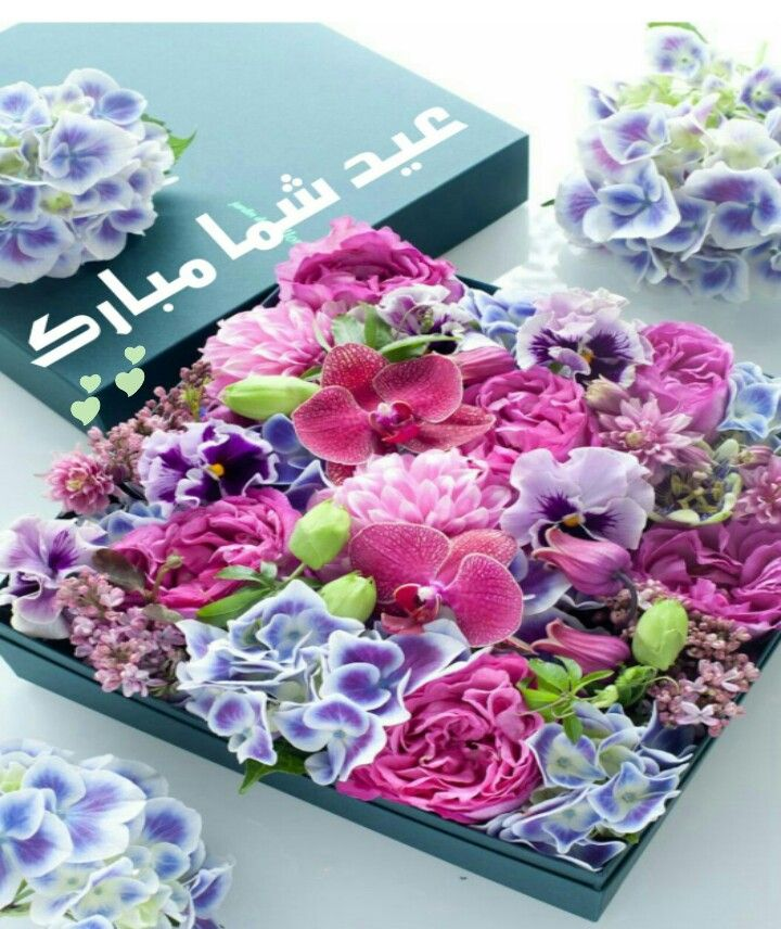 عيد شما مبارك Happy Eid Eid Mubarak Cool Words