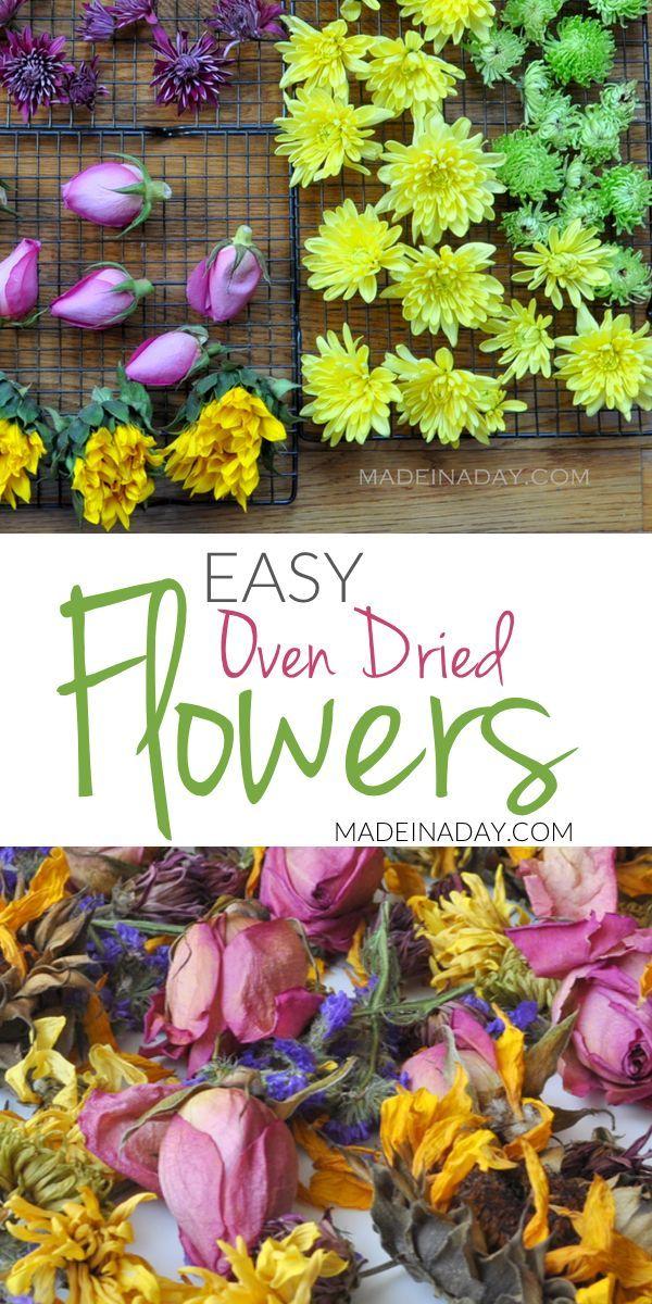 Mühelose Ofen-Trockenblumen für Handwerk