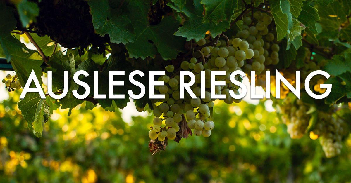 I Am Trying Auslese Riesling! Discover Your Wine Palate Preferences Now!
