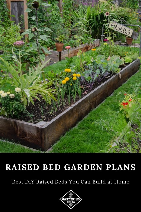 Best DIY Raised Bed Garden Plans | How to Grow Vegetable ... Raised Bed Vegetable Gardens Design Disabled on raised vegetable gardens for beginners, greenhouse designs, raised bed garden soil, raised garden bed corners, raised garden bed ideas, raised bed planting layout guides, block raised bed garden designs, rose garden beds designs, raised bed pond designs, raised vegetable garden box, raised bed vegetable planting, raised vegetable bed material, raised garden bed kit, creative raised garden bed designs, raised vegetable garden design ideas, raised bed vegetable gardening, raised garden boxes, raised bed garden layouts, raised garden bed designs wood, raised veggie garden ideas,