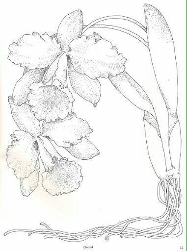 Pin von Helen Mendenhall auf Drawings | Pinterest