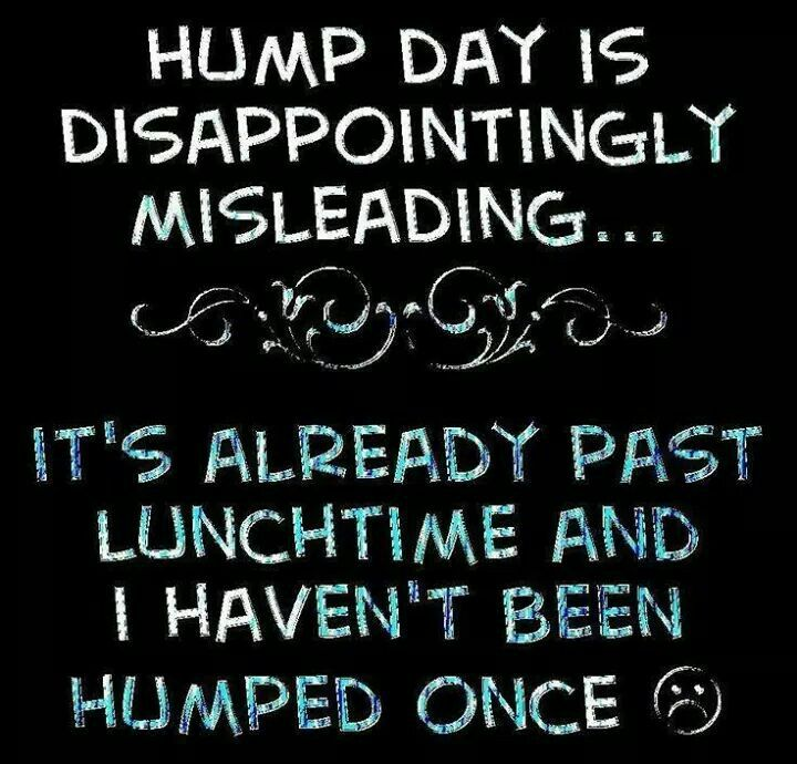 Hump day is so misleading
