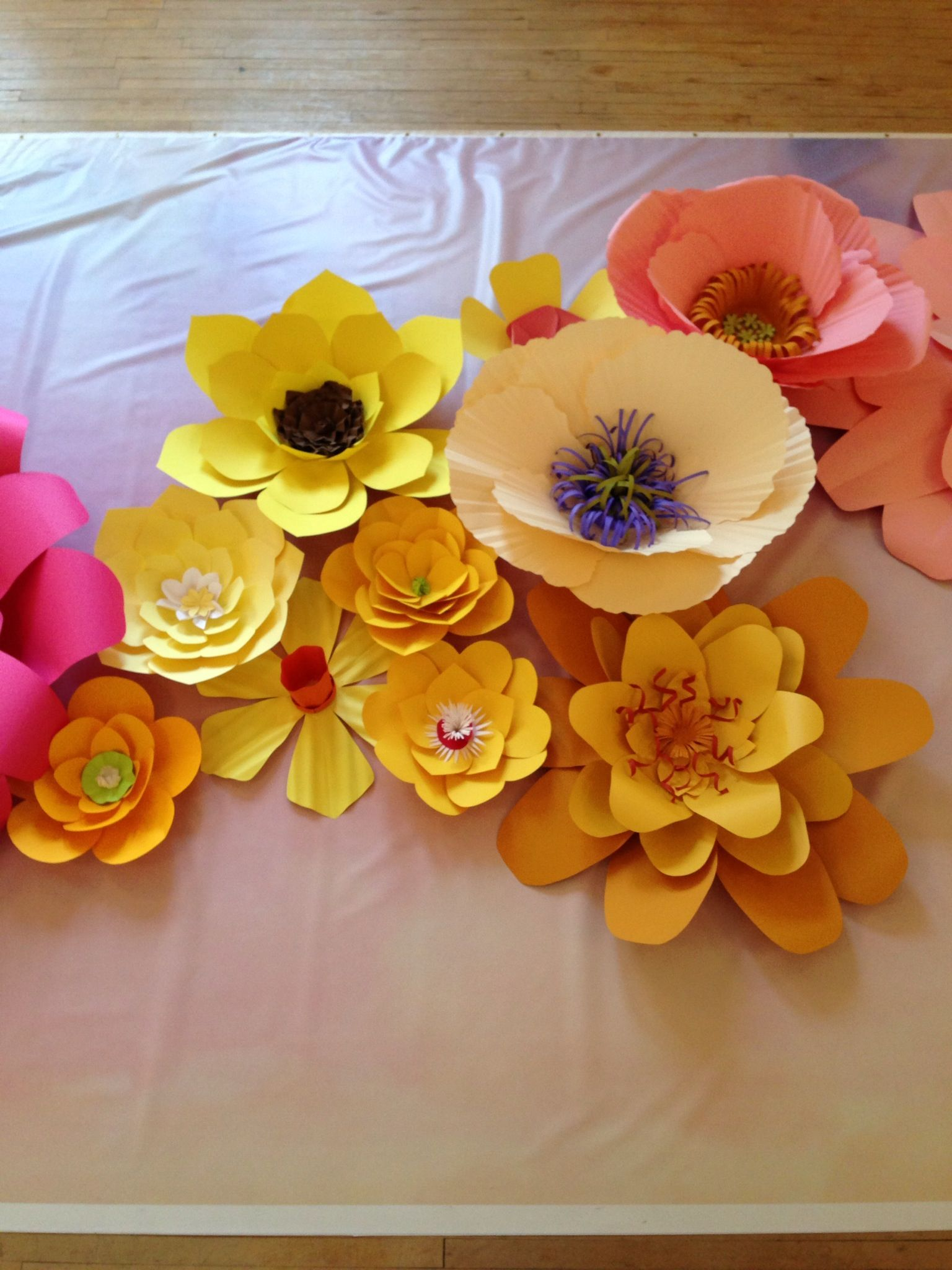 Assembly Of Paper Flower Stage Background 7 Paper Flowers