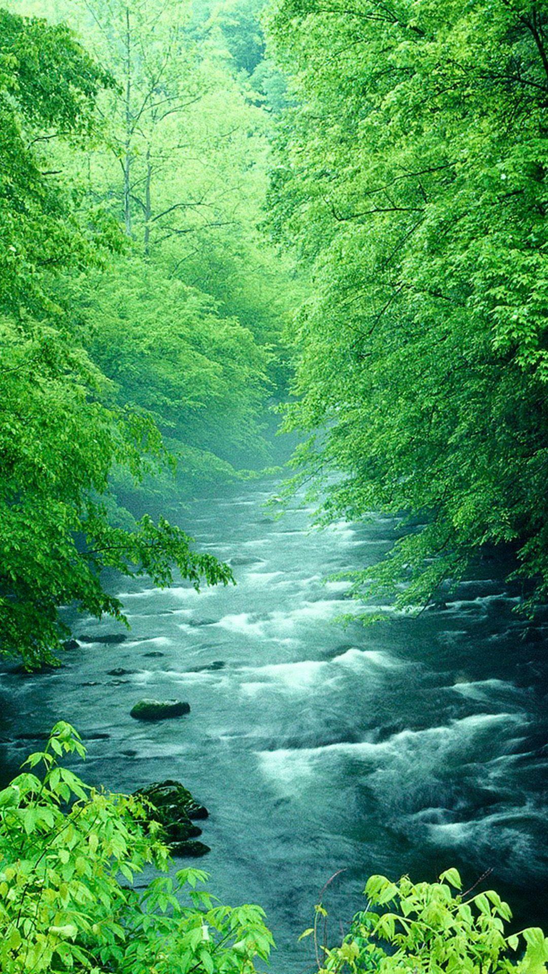 川 風景 美しい風景 美しい風景写真