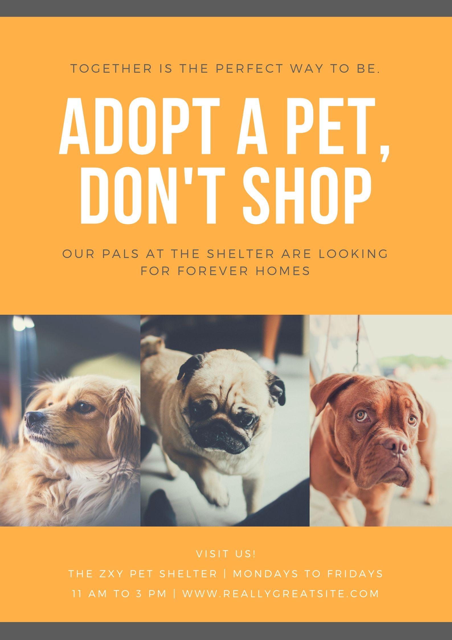 Pin By John Amparado On Dog Moodboard Pet Relocation Pets Pet Adoption