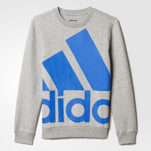 Adidas Sport Essentials Oversize Logo sweatshirt