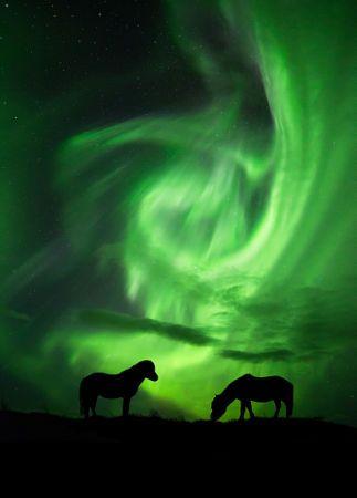 """Lost in the nightlights"" by Arnar Kristjansson"