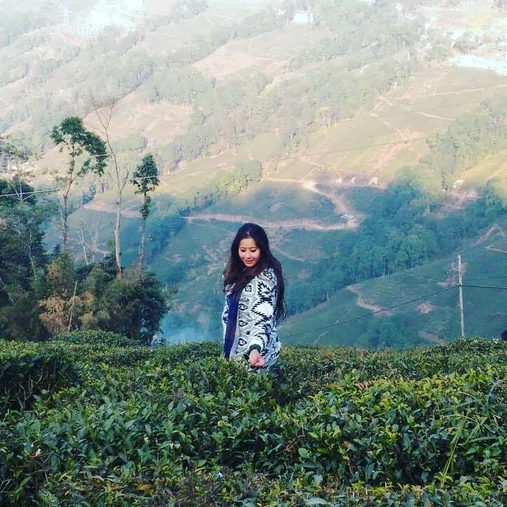 Walk in Tea estate  Jan 2018  #travel #darjeeling #darjeelingdairies #traveldairies #travelstories #teagarden #teagardendarjeeling #indiatourism #indiantravelblogger #travelblogger #travelawesome #nomadsofindia #nomad #wanderlust #wanderer #traveller #instatravel #discover_india #exploringindia #solofemaletravel #solotravelingisfun #solotravel #girlaroundworld #girlsthatwander #livingmytraveldreams #dreamexplorecapture #lifeislikeacamera