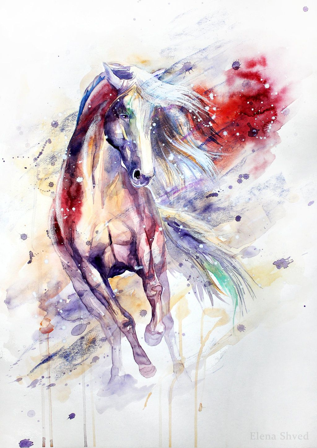 Elena Shved Watercolour Horse Pinturas De Animais Cavalo