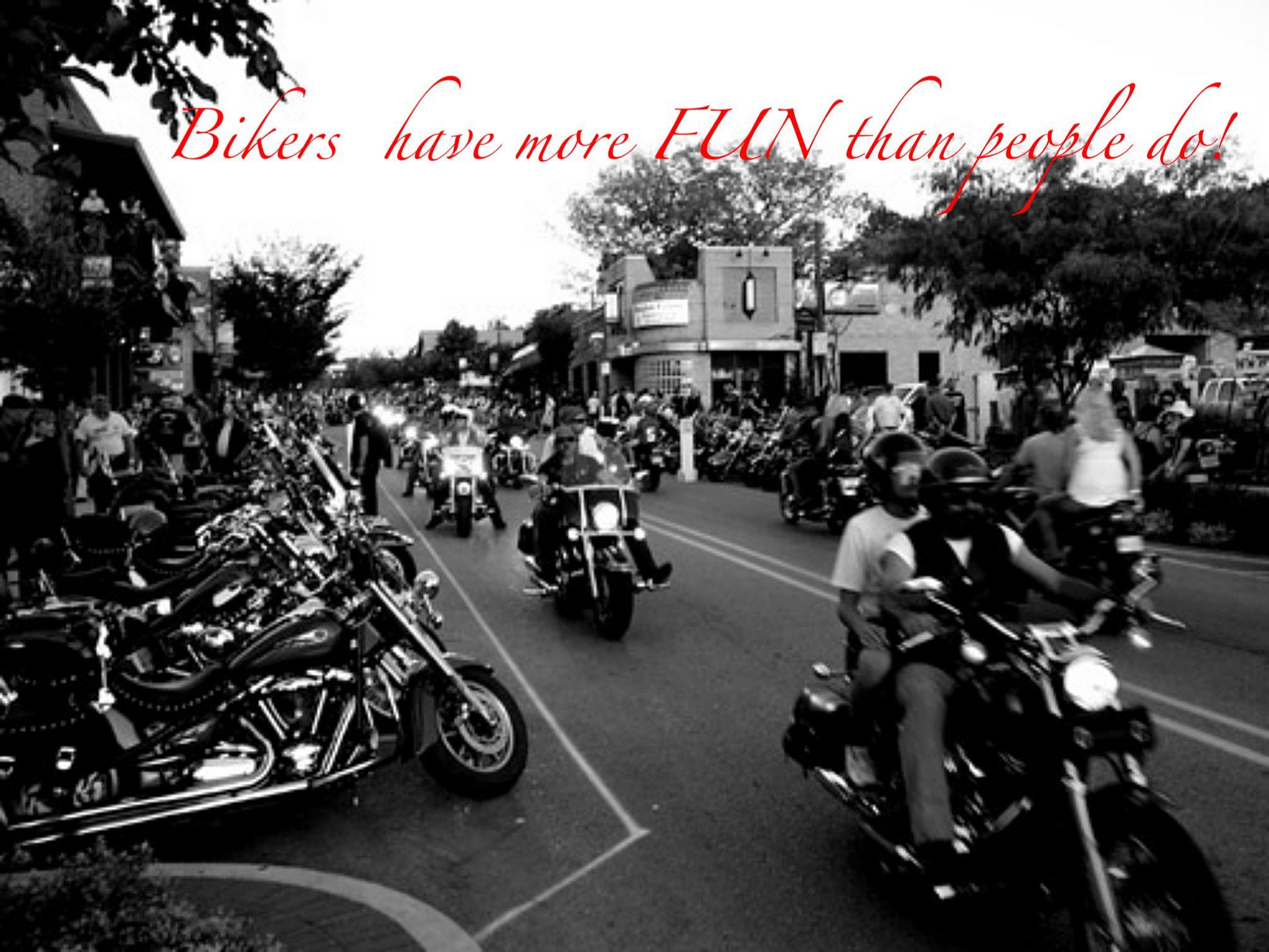 Harley Davidson Quotes Biker Fun  Biker Quotes  Pinterest  Bikers Harley Davidson And
