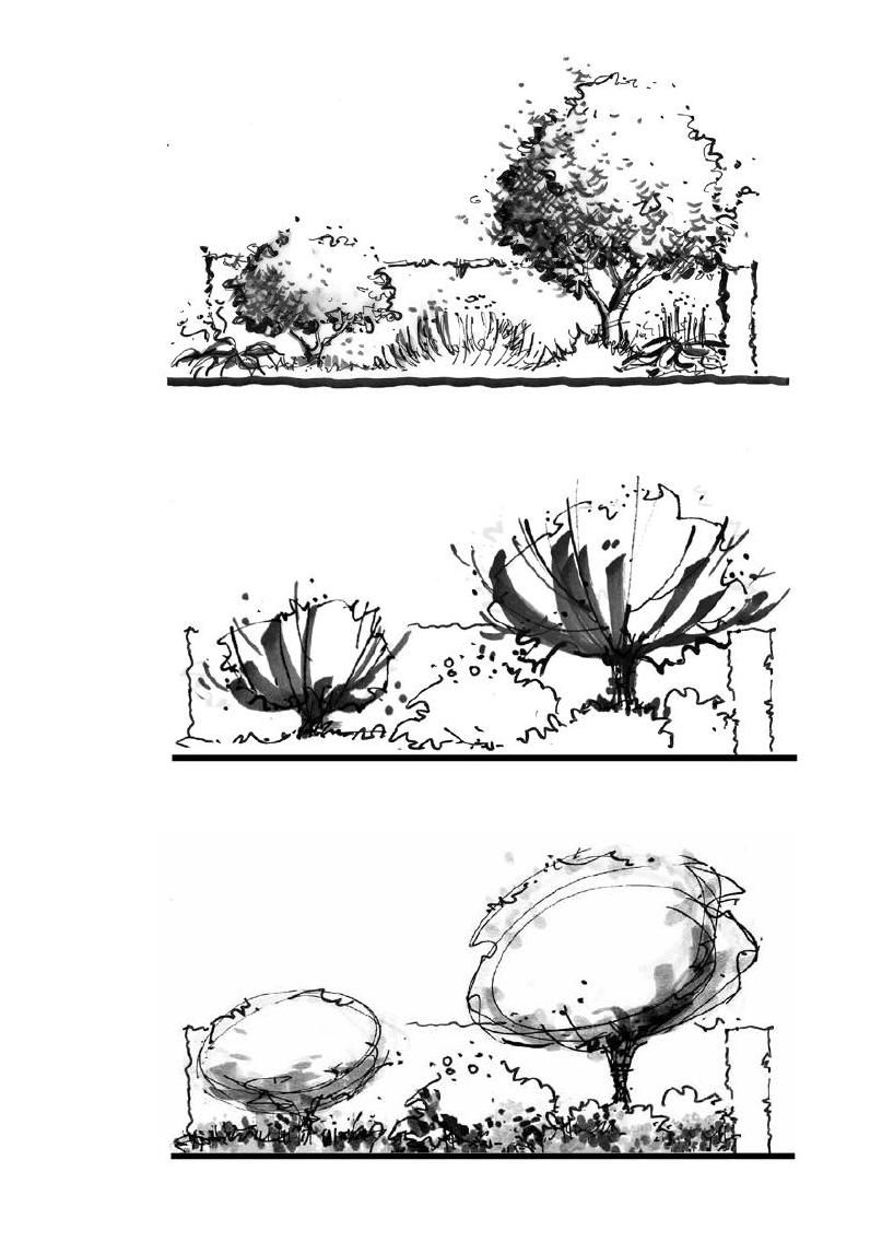 Landscape Architecture Perspective Drawings drawing for landscape architects | perspective, architects and symbols