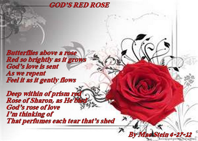 red red rose poem essay The two poems, 'a red, red, rose' by robert burns, and 'valentine' by carol ann duffy differ greatly, although the theme of love remains invariable throughout the poems were written in different centuries, 'a red, red, rose' was written in the eighteenth century, 'valentine' was written in the twenty-first.
