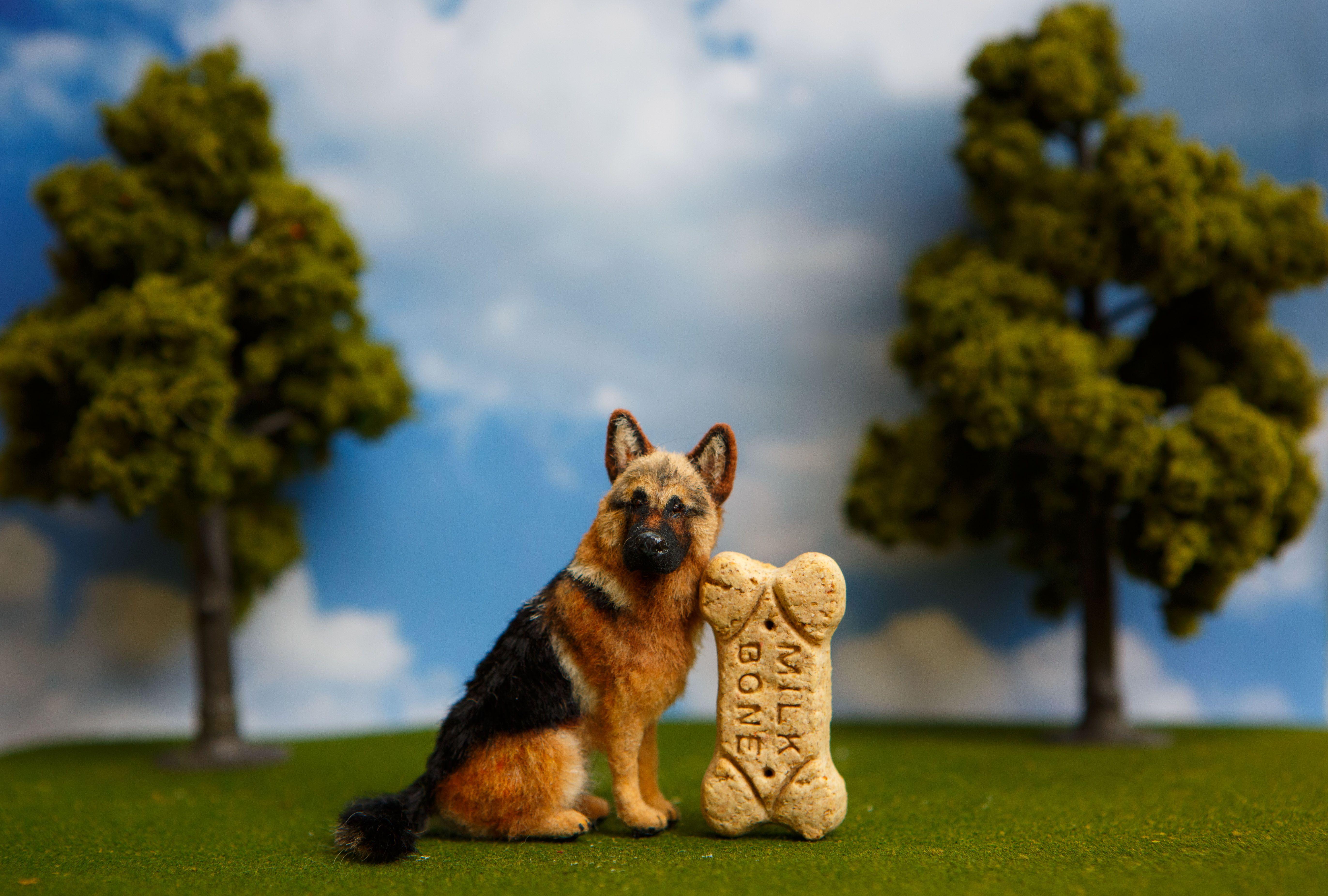 German Shepherd Dog Frame Vintage Art German Shepherd Gifts Unique Cool Dog Frames Dog Picture Frames Vintage Art
