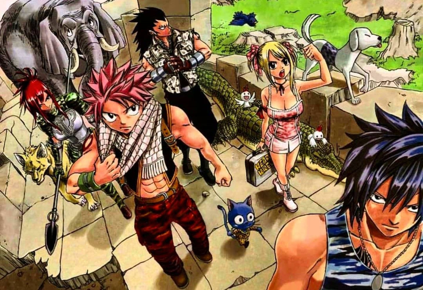 Pin On Fairy Tail