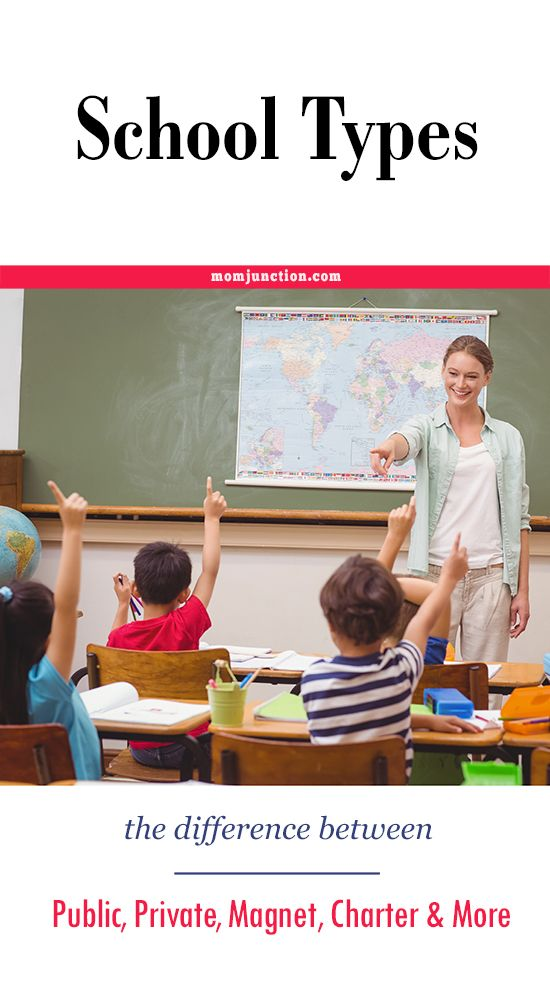 charter and magnet schools Magnet schools, a category of public schools, offer students and parents a choice of a different kind of education they also offer new and exciting teaching jobs whereas charter schools.