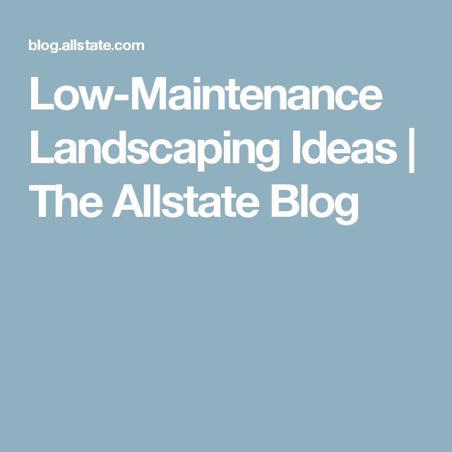 Low-Maintenance Landscaping Ideas | The Allstate Blog