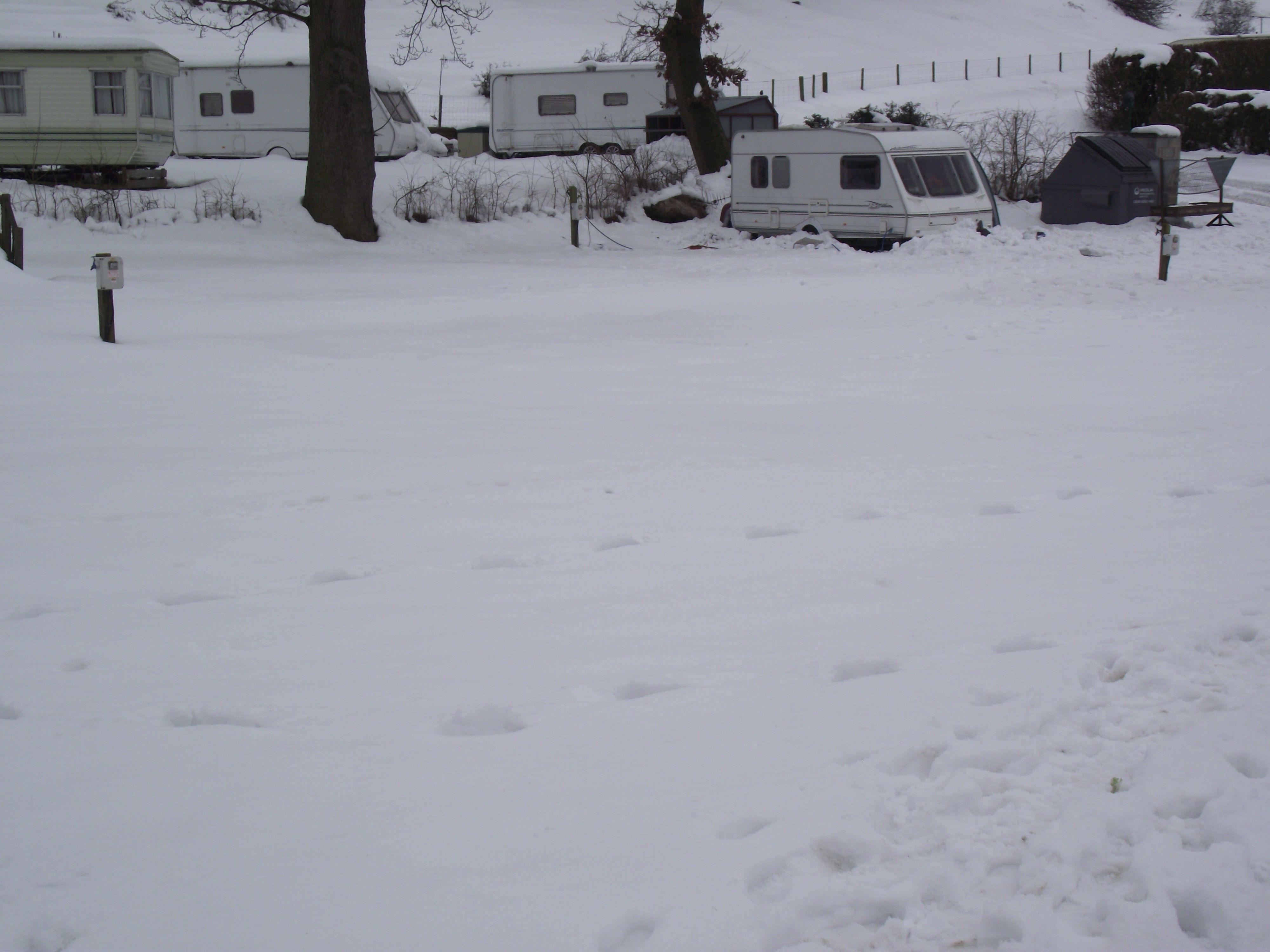 Deep Snow 2013.