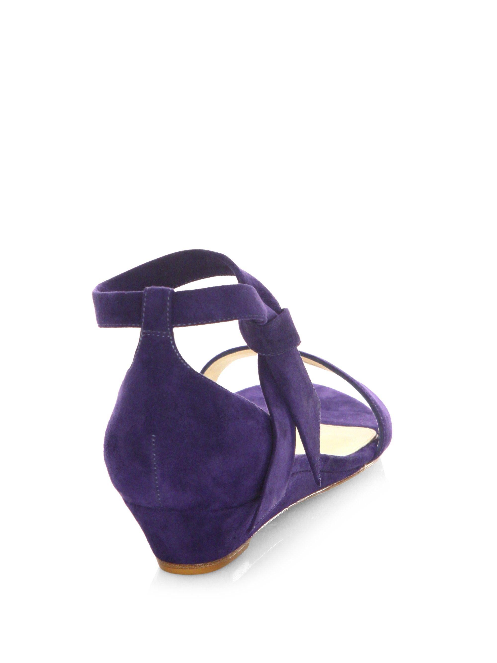 a67c0c3d1905 Alexandre Birman Clarita Suede Ankle-Tie Demi-Wedge Sandals - Nude 5.5
