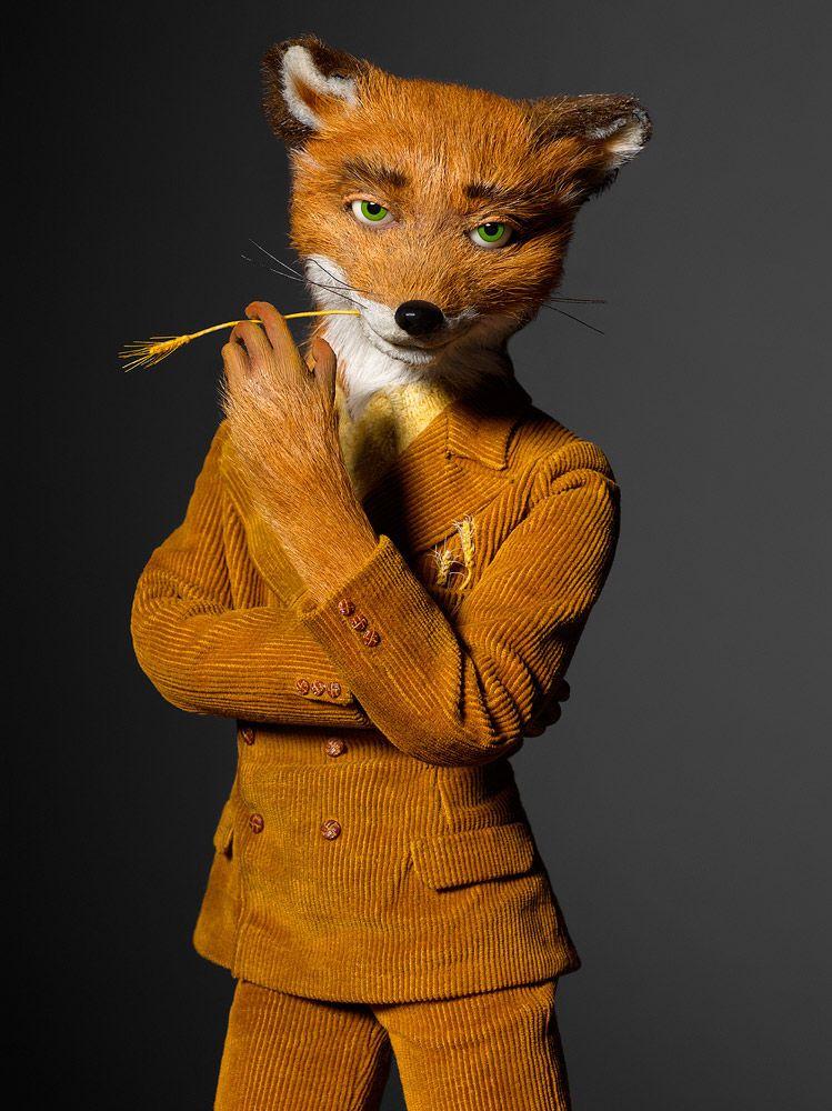 Mr Fantastic Henry Leutwyler Galleries Portraits Fantastic Mr Fox Fantastic Fox Wes Anderson Movies
