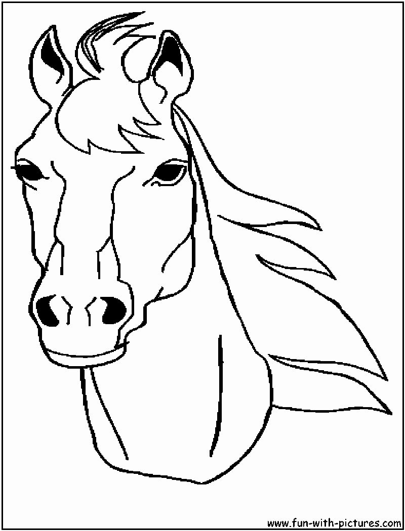 Horse Head Coloring Page Elegant Animal Stronger Horse Head Coloring To Print Horse Coloring Pages Horse Coloring Horse Face
