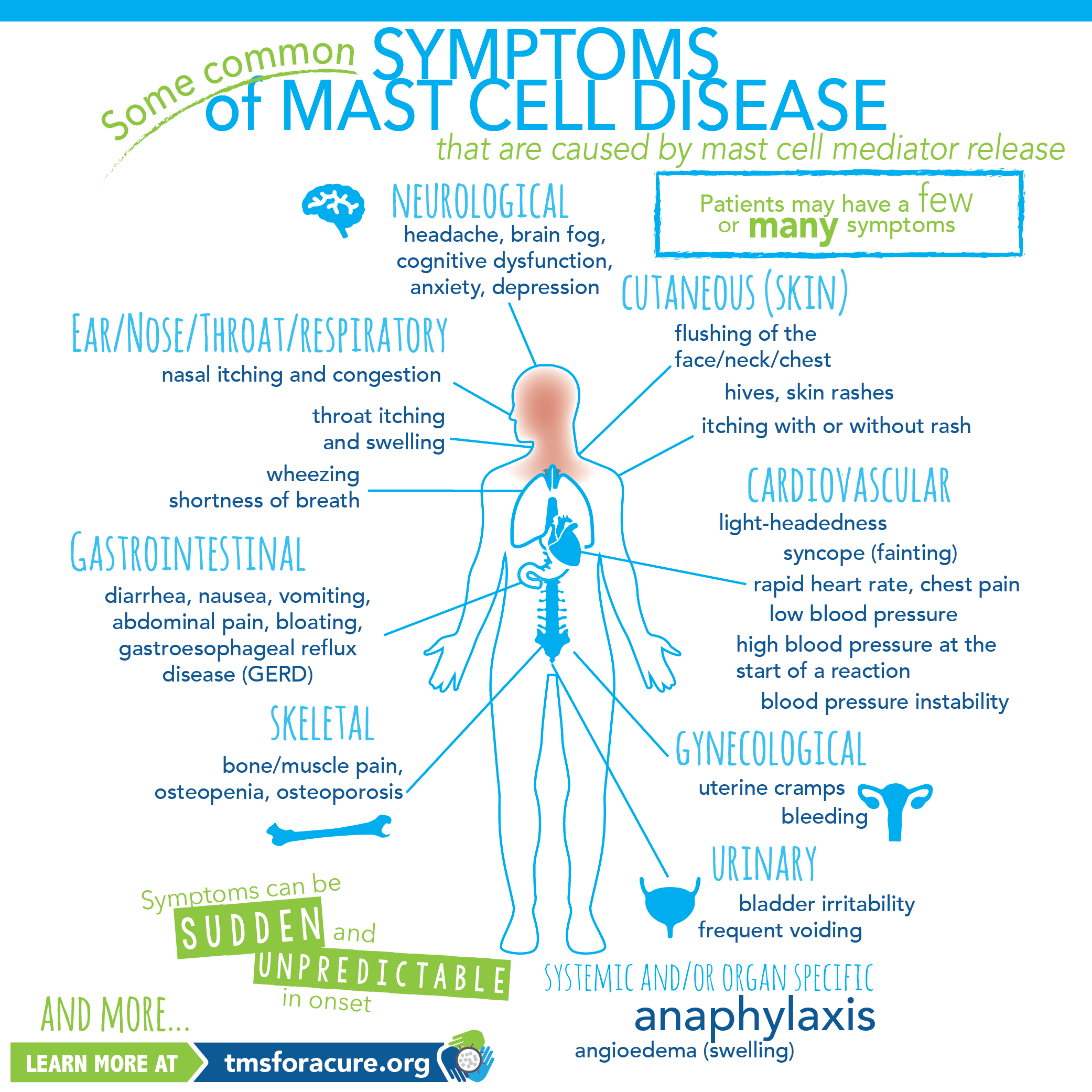 Mast Cell Disease Symptoms Infographic Mast Cell